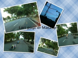 collage lari