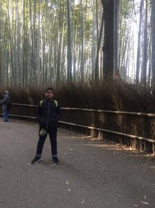 #2 in bamboo